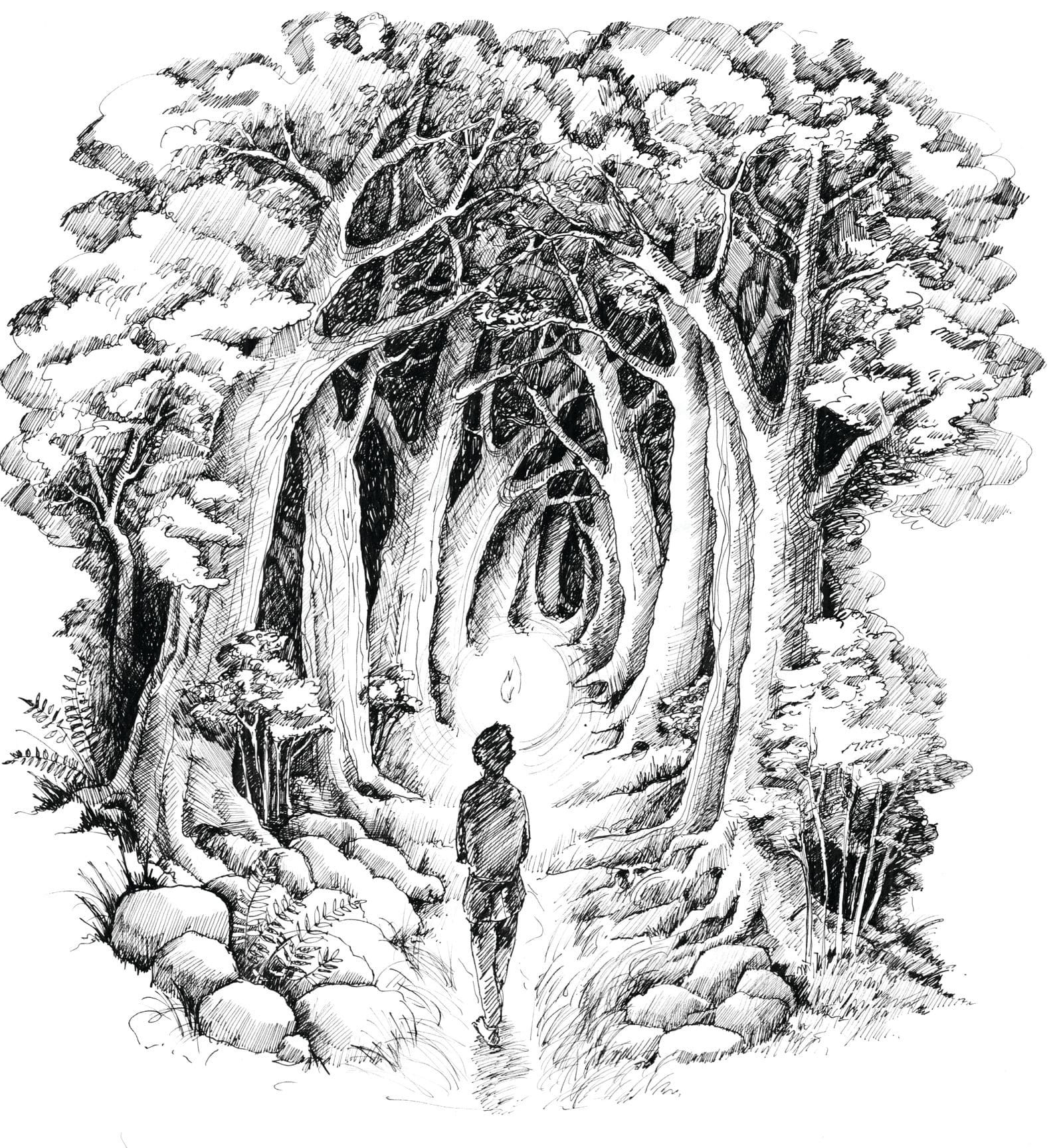 Noc między Tam i Tu - Marta Krajewska - ilustracja b&w 06