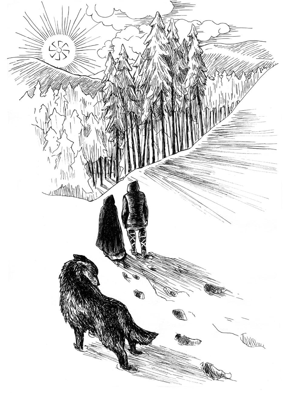 Zaszyj wilkom oczy - Marta Krajewska - Droga