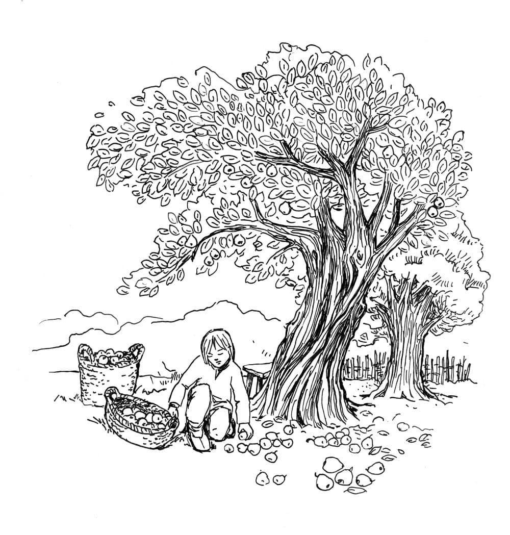 Świt midzy dobrym i złym - ilustracja 15